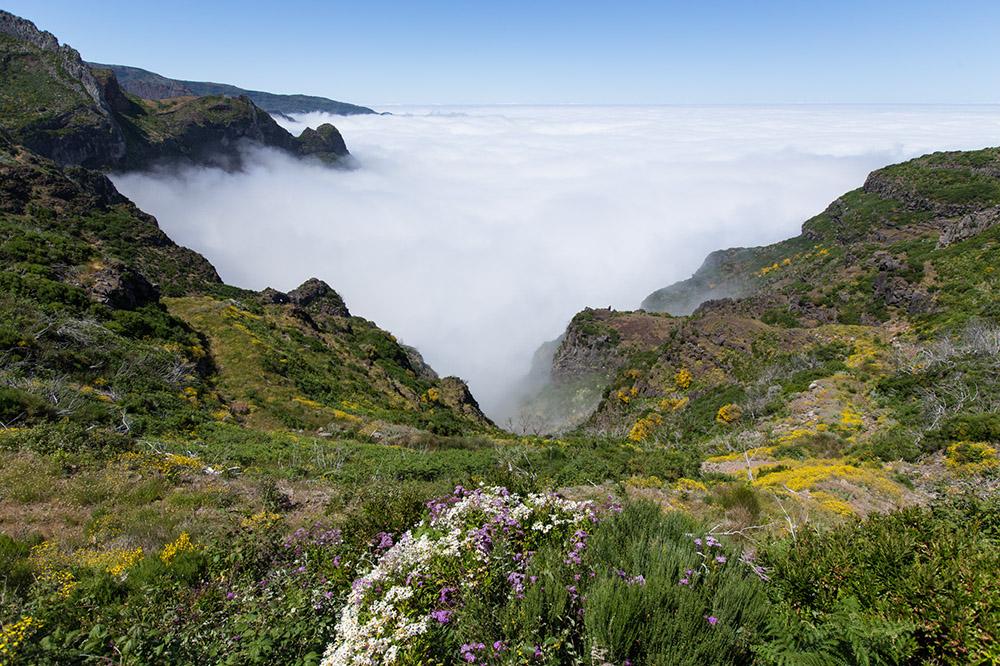 Aktivferien Herbst Madeira Geniessen