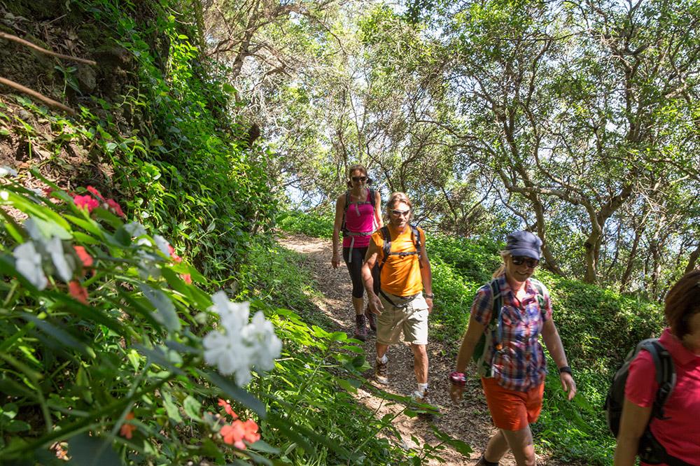 Aktiv im Herbst Madeira Wandern Levadas